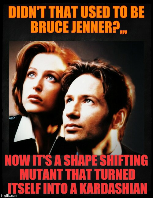 DIDN'T THAT USED TO BE       BRUCE JENNER?,,, NOW IT'S A SHAPE SHIFTING MUTANT THAT TURNED ITSELF INTO A KARDASHIAN | image tagged in mulder and scully gaze to whatever | made w/ Imgflip meme maker