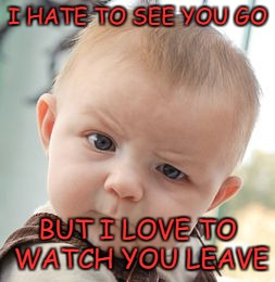 Skeptical Baby Meme | I HATE TO SEE YOU GO BUT I LOVE TO WATCH YOU LEAVE | image tagged in memes,skeptical baby | made w/ Imgflip meme maker