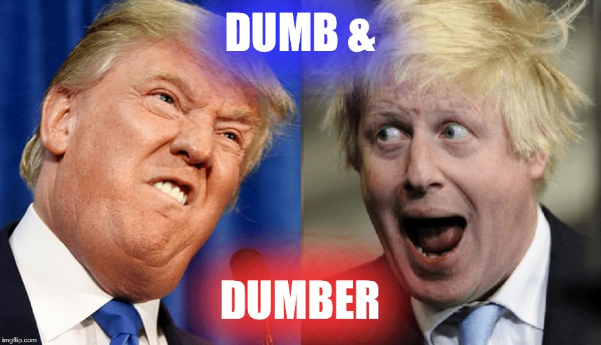 DUMB &; DUMBER | image tagged in dumb  dumber,trump,boris johnson | made w/ Imgflip meme maker