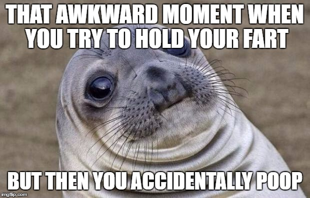 Awkward Moment Sealion Meme | THAT AWKWARD MOMENT WHEN YOU TRY TO HOLD YOUR FART BUT THEN YOU ACCIDENTALLY POOP | image tagged in memes,awkward moment sealion | made w/ Imgflip meme maker