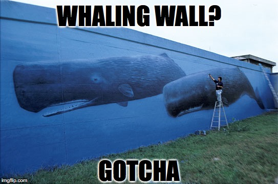 WHALING WALL? GOTCHA | made w/ Imgflip meme maker
