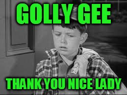 GOLLY GEE THANK YOU NICE LADY | made w/ Imgflip meme maker
