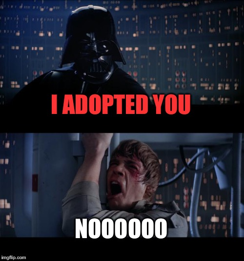 Star Wars No Meme | I ADOPTED YOU NOOOOOO | image tagged in memes,star wars no | made w/ Imgflip meme maker