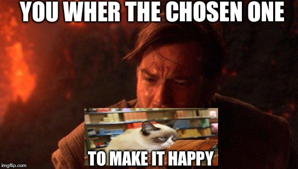 You Were The Chosen One (Star Wars) Meme | YOU WHER THE CHOSEN ONE TO MAKE IT HAPPY | image tagged in memes,you were the chosen one star wars | made w/ Imgflip meme maker