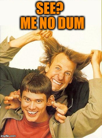 DUMB and dumber | SEE?  ME NO DUM | image tagged in dumb and dumber | made w/ Imgflip meme maker