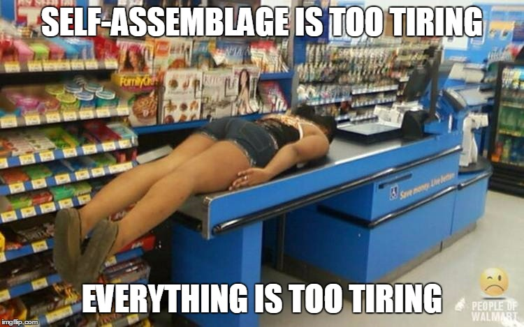 SELF-ASSEMBLAGE IS TOO TIRING EVERYTHING IS TOO TIRING | made w/ Imgflip meme maker