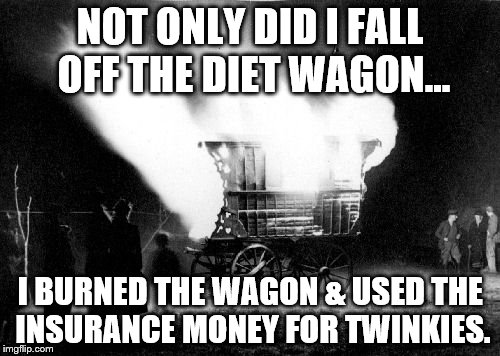 DIET FAIL |  NOT ONLY DID I FALL OFF THE DIET WAGON... I BURNED THE WAGON & USED THE INSURANCE MONEY FOR TWINKIES. | image tagged in diets,funny food | made w/ Imgflip meme maker