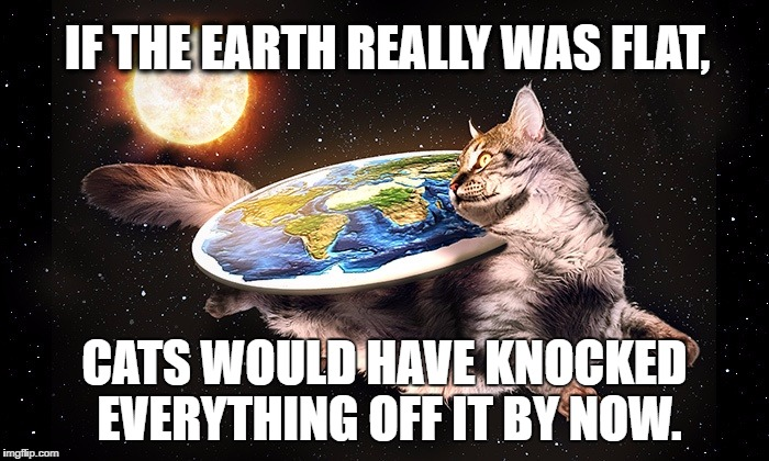 IF THE EARTH REALLY WAS FLAT, CATS WOULD HAVE KNOCKED EVERYTHING OFF IT BY NOW. | image tagged in flat earth cat | made w/ Imgflip meme maker
