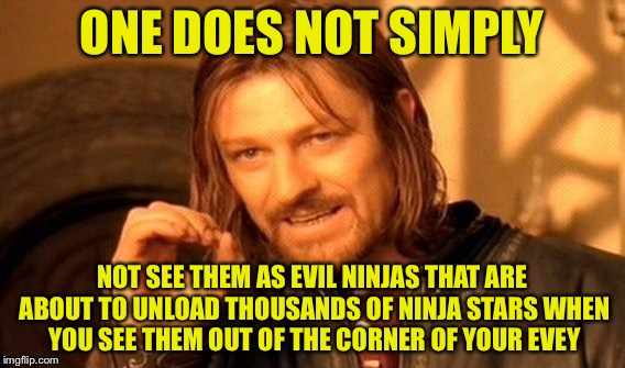 One Does Not Simply Meme | ONE DOES NOT SIMPLY NOT SEE THEM AS EVIL NINJAS THAT ARE ABOUT TO UNLOAD THOUSANDS OF NINJA STARS WHEN YOU SEE THEM OUT OF THE CORNER OF YOU | image tagged in memes,one does not simply | made w/ Imgflip meme maker