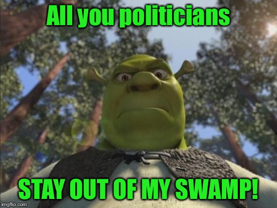 All you politicians STAY OUT OF MY SWAMP! | made w/ Imgflip meme maker