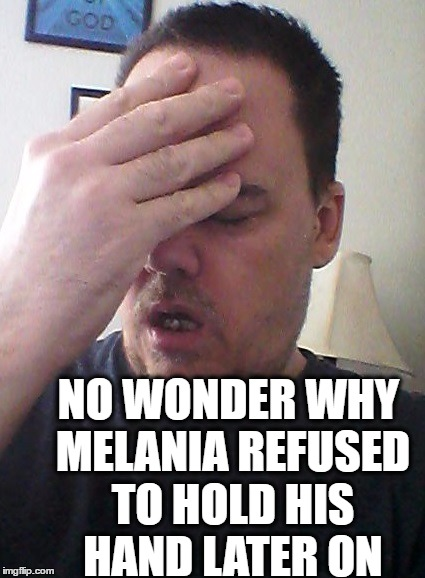 face palm | NO WONDER WHY MELANIA REFUSED TO HOLD HIS HAND LATER ON | image tagged in face palm | made w/ Imgflip meme maker