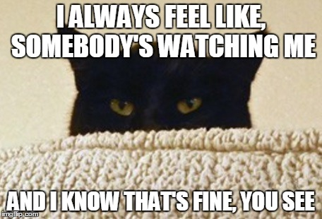 I ALWAYS FEEL LIKE, SOMEBODY'S WATCHING ME AND I KNOW THAT'S FINE, YOU SEE | made w/ Imgflip meme maker