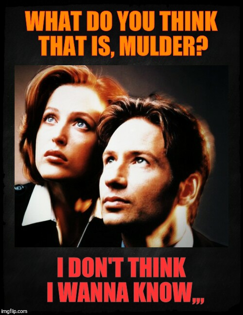 Mulder and Scully gaze to whatever,,, | WHAT DO YOU THINK THAT IS, MULDER? I DON'T THINK  I WANNA KNOW,,, | image tagged in mulder and scully gaze to whatever   | made w/ Imgflip meme maker