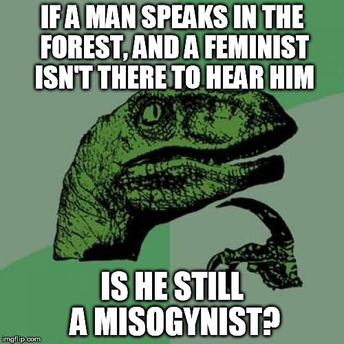 A new spin on an age old question. | IF A MAN SPEAKS IN THE FOREST, AND A FEMINIST ISN'T THERE TO HEAR HIM IS HE STILL A MISOGYNIST? | image tagged in funny,memes,philosoraptor,misogynist,feminist | made w/ Imgflip meme maker