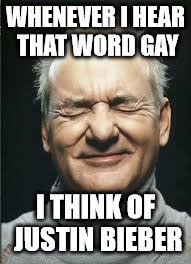 justin bieber | WHENEVER I HEAR THAT WORD GAY I THINK OF JUSTIN BIEBER | image tagged in justin bieber,funny memes,gay is ok,bill murray | made w/ Imgflip meme maker