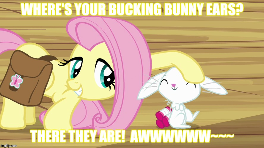WHERE'S YOUR BUCKING BUNNY EARS? THERE THEY ARE!  AWWWWWW~~~ | made w/ Imgflip meme maker