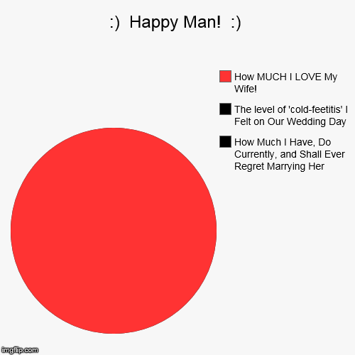 :)  Happy Man!  :) | How Much I Have, Do Currently, and Shall Ever Regret Marrying Her, The level of 'cold-feetitis' I Felt on Our Wedding D | image tagged in funny,pie charts | made w/ Imgflip pie chart maker