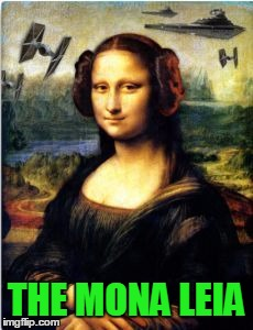 Humor is in the eye of the beholder | THE MONA LEIA | image tagged in mona leia,star wars | made w/ Imgflip meme maker