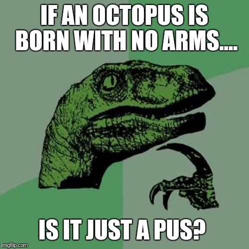 Philosoraptor Meme | IF AN OCTOPUS IS BORN WITH NO ARMS.... IS IT JUST A PUS? | image tagged in memes,philosoraptor | made w/ Imgflip meme maker