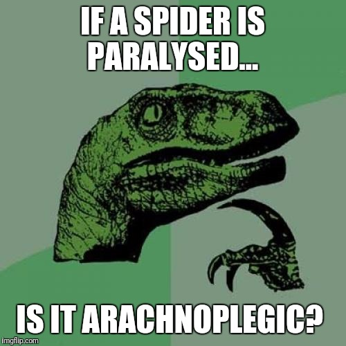 Philosoraptor Meme | IF A SPIDER IS PARALYSED... IS IT ARACHNOPLEGIC? | image tagged in memes,philosoraptor | made w/ Imgflip meme maker