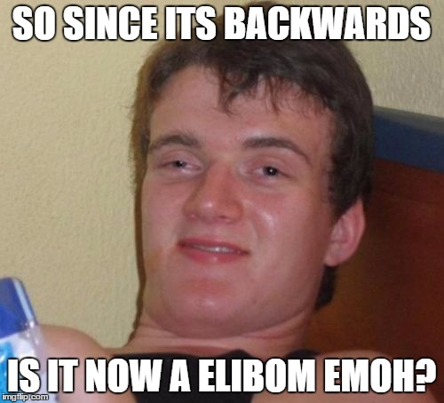 10 Guy Meme | SO SINCE ITS BACKWARDS IS IT NOW A ELIBOM EMOH? | image tagged in memes,10 guy | made w/ Imgflip meme maker