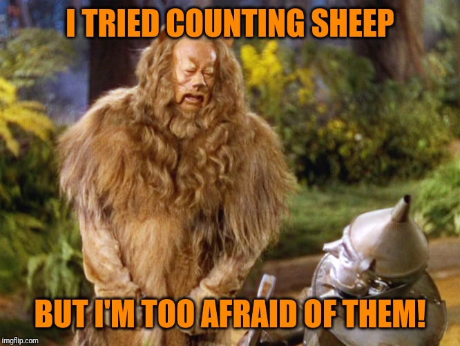 I TRIED COUNTING SHEEP BUT I'M TOO AFRAID OF THEM! | made w/ Imgflip meme maker