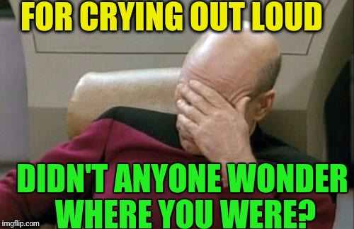 Captain Picard Facepalm Meme | FOR CRYING OUT LOUD DIDN'T ANYONE WONDER WHERE YOU WERE? | image tagged in memes,captain picard facepalm | made w/ Imgflip meme maker