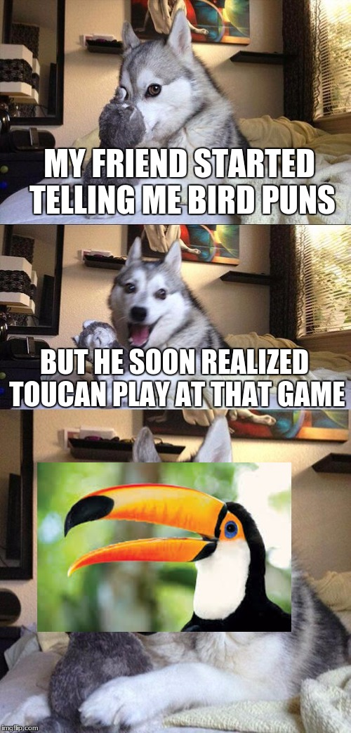 Bad Pun Dog Meme | MY FRIEND STARTED TELLING ME BIRD PUNS BUT HE SOON REALIZED TOUCAN PLAY AT THAT GAME | image tagged in memes,bad pun dog | made w/ Imgflip meme maker