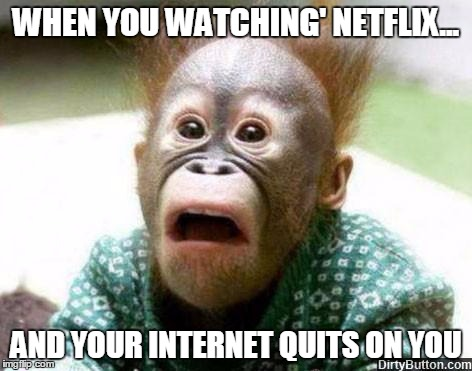 OH SHIT MONKEY | WHEN YOU WATCHING' NETFLIX... AND YOUR INTERNET QUITS ON YOU | image tagged in oh shit monkey | made w/ Imgflip meme maker
