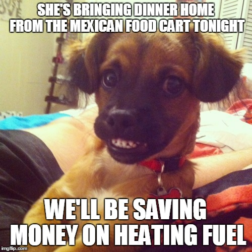 SHE'S BRINGING DINNER HOME FROM THE MEXICAN FOOD CART TONIGHT WE'LL BE SAVING MONEY ON HEATING FUEL | made w/ Imgflip meme maker