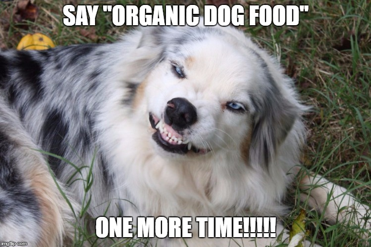 "SAY ""ORGANIC DOG FOOD""; ONE MORE TIME!!!!! 