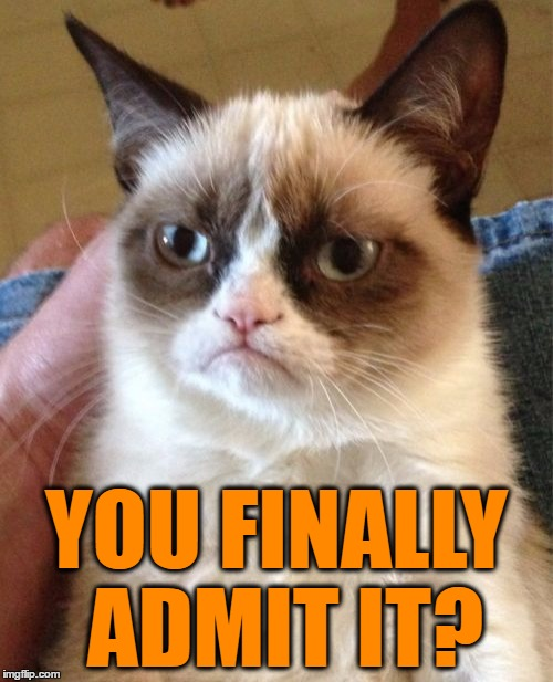 Grumpy Cat Meme | YOU FINALLY ADMIT IT? | image tagged in memes,grumpy cat | made w/ Imgflip meme maker