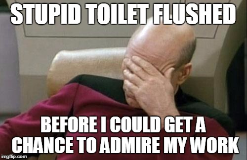 Captain Picard Facepalm Meme | STUPID TOILET FLUSHED BEFORE I COULD GET A CHANCE TO ADMIRE MY WORK | image tagged in memes,captain picard facepalm | made w/ Imgflip meme maker