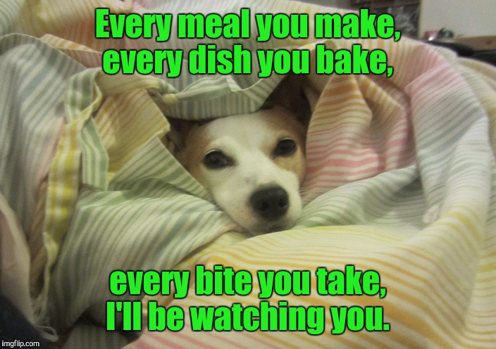 Dog hiding under a blanket | Every meal you make, every dish you bake, every bite you take, I'll be watching you. | image tagged in dog hiding under a blanket | made w/ Imgflip meme maker