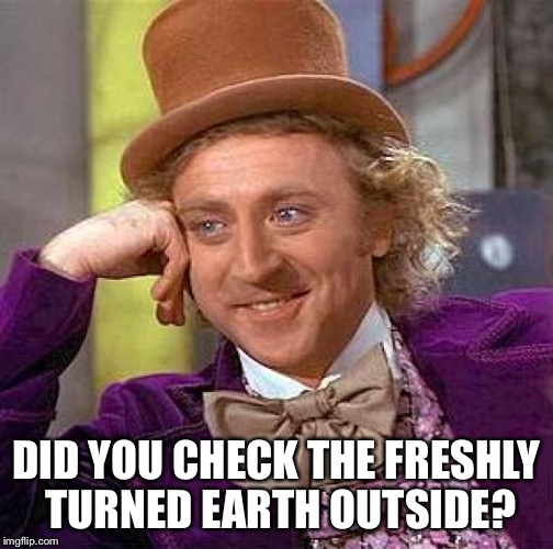 Creepy Condescending Wonka Meme | DID YOU CHECK THE FRESHLY TURNED EARTH OUTSIDE? | image tagged in memes,creepy condescending wonka | made w/ Imgflip meme maker