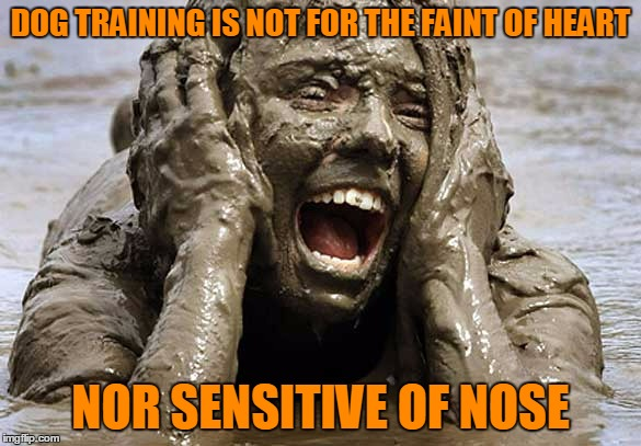 DOG TRAINING IS NOT FOR THE FAINT OF HEART NOR SENSITIVE OF NOSE | made w/ Imgflip meme maker