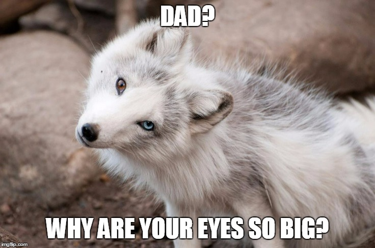 DAD? WHY ARE YOUR EYES SO BIG? | made w/ Imgflip meme maker