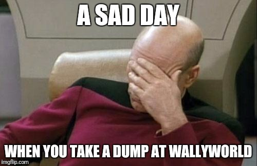 Captain Picard Facepalm Meme | A SAD DAY WHEN YOU TAKE A DUMP AT WALLYWORLD | image tagged in memes,captain picard facepalm | made w/ Imgflip meme maker