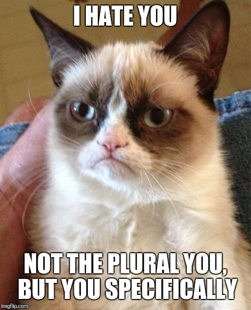 Grumpy Cat Meme | I HATE YOU NOT THE PLURAL YOU, BUT YOU SPECIFICALLY | image tagged in memes,grumpy cat | made w/ Imgflip meme maker