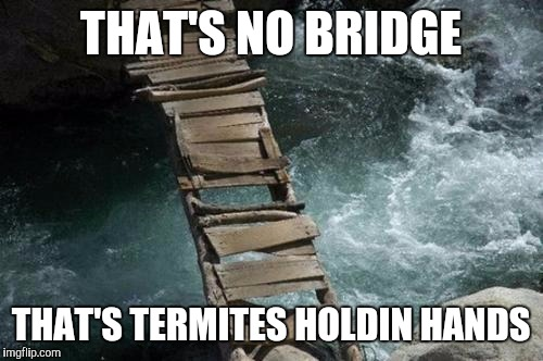 Movie one liner week - a jeffnethercot event may 22nd to 28th... | THAT'S NO BRIDGE THAT'S TERMITES HOLDIN HANDS | image tagged in memes,movie one liner week,jeffnethercot | made w/ Imgflip meme maker