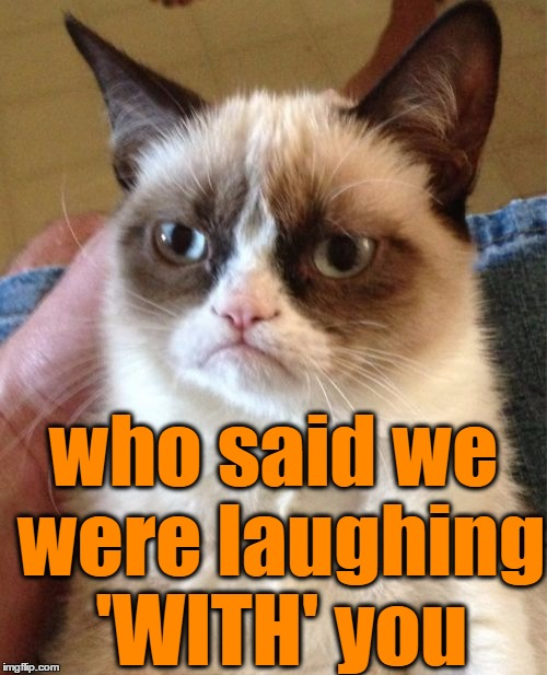 Grumpy Cat Meme | who said we were laughing 'WITH' you | image tagged in memes,grumpy cat | made w/ Imgflip meme maker