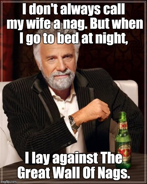 The Most Interesting Man In The World Meme | I don't always call my wife a nag. But when I go to bed at night, I lay against The Great Wall Of Nags. | image tagged in memes,the most interesting man in the world | made w/ Imgflip meme maker
