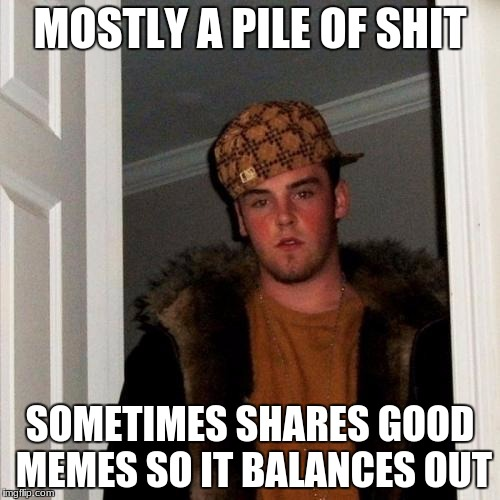 Scumbag Steve Meme | MOSTLY A PILE OF SHIT SOMETIMES SHARES GOOD MEMES SO IT BALANCES OUT | image tagged in memes,scumbag steve | made w/ Imgflip meme maker