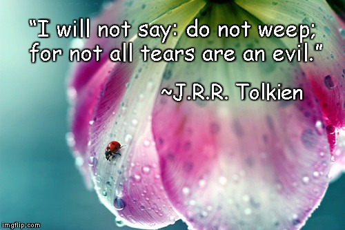 "Raindrop Flower | ""I will not say: do not weep; for not all tears are an evil."" ~J.R.R. Tolkien 