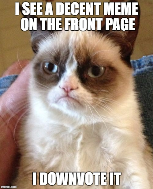 Grumpy Cat Meme | I SEE A DECENT MEME ON THE FRONT PAGE I DOWNVOTE IT | image tagged in memes,grumpy cat,funny,meme,front page,downvote | made w/ Imgflip meme maker