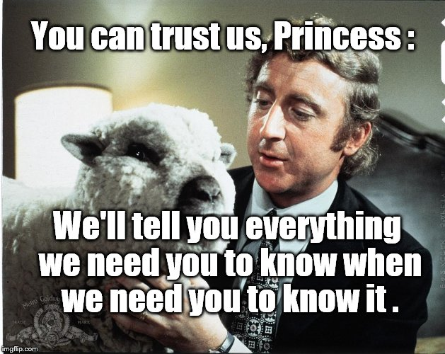 Baaa | You can trust us, Princess : We'll tell you everything we need you to know when we need you to know it . | image tagged in baaa | made w/ Imgflip meme maker