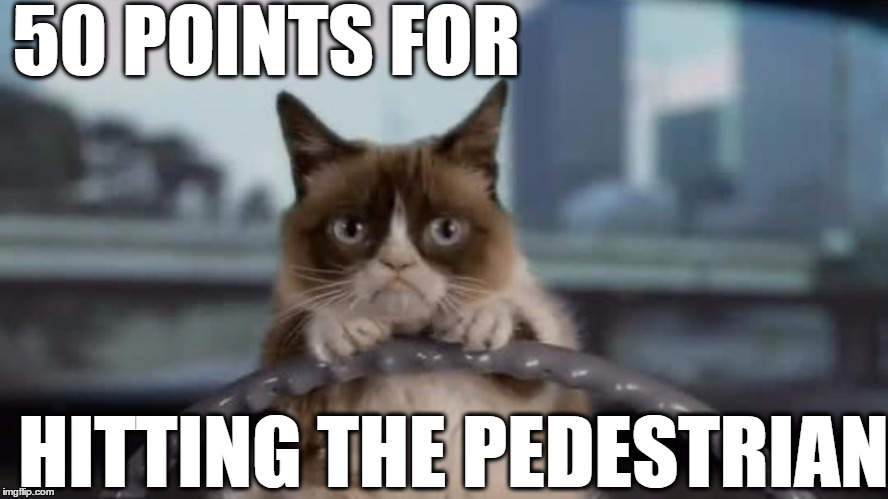 VROOOOM! | 50 POINTS FOR HITTING THE PEDESTRIAN | image tagged in grumpy cat,car | made w/ Imgflip meme maker