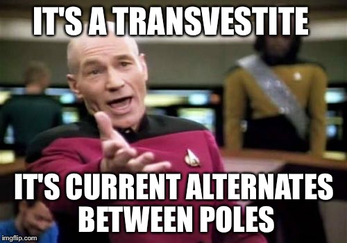 Picard Wtf Meme | IT'S A TRANSVESTITE IT'S CURRENT ALTERNATES BETWEEN POLES | image tagged in memes,picard wtf | made w/ Imgflip meme maker