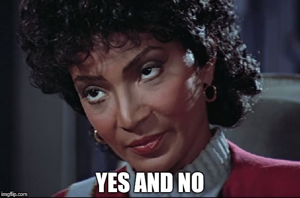 Uhura not amused | YES AND NO | image tagged in uhura not amused | made w/ Imgflip meme maker