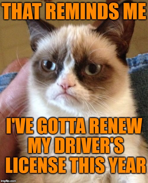 Grumpy Cat Meme | THAT REMINDS ME I'VE GOTTA RENEW MY DRIVER'S LICENSE THIS YEAR | image tagged in memes,grumpy cat | made w/ Imgflip meme maker